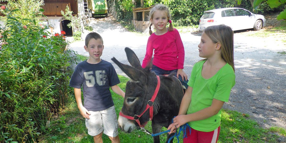 Adventure farm South Tyrol – Family holidays in Eisacktal